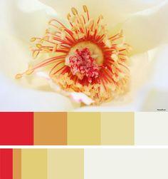 color palette :: Page 27 :: Brandi Girl Blog