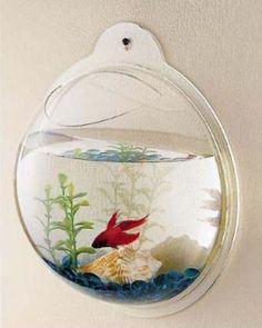 Wall Mount Fish Aquarium