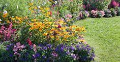 Haluatko puutarhaan lisää kukkia? Viherpiha esittelee kolme tapaa, joilla kukkapenkin perustaminen onnistuu.