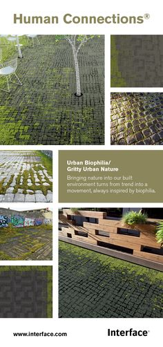 Human Connections, Urban Biophilia Biophilic Architecture, Landscape Architecture, Urban Landscape, Landscape Design, Sustainable City, Urban Nature, Social Housing, Outside World, Human Connection