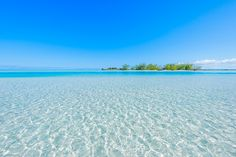 Beautiful secluded beach on the island of North Caicos in the Turks and Caicos Islands. Discover the natural sights and attractions of this quiet tropical destination. Beaches Turks And Caicos, The Turk, Secluded Beach, Digital Photography, Caribbean, Tourism, Ocean, Life Goals, Vacations