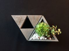 #ZAOME#concrete triangle holder / fleshy vase by zaome studio 【造么工作室】【何夕】 混凝土自制多肉花瓶