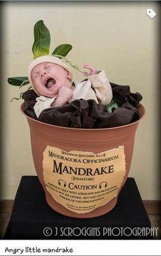 41 ideas for baby announcement halloween harry potter Baby Harry Potter, Harry Potter Nursery, Harry Potter Baby Shower, Newborn Halloween Costumes, Baby Costumes, Costume Halloween, Adornos Halloween, Halloween Disfraces, First Halloween