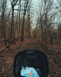 ::: #woodland adventures again ;) | #awalkwithsimon