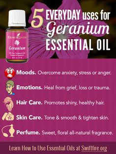 Young Living Essential Oils: Geranium