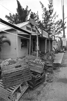 View showing the front of the Turtle Kraals store - Key West, Florida