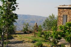One of our guests enjoying the view. Farmhouse, Mountains, Gallery, Nature, Travel, Image, Viajes, Rural House, Naturaleza
