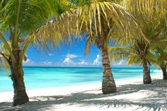 Saona Island in the Dominican Republic - where they filmed the bounty advert I believe. Had a fantastic fresh lobster lunch with a great group of people on holiday