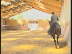 ▶ Classical Dressage Vol. 1: School of Aids, Philippe Karl, DVD Horse Training - YouTube