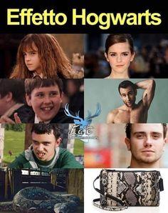 Harry Potter Tumblr, Harry Potter Anime, Memes Do Harry Potter, Harry Potter Comics, Mundo Harry Potter, Harry Potter Spells, Harry Potter Pictures, Harry Potter Universal, Harry Potter Characters