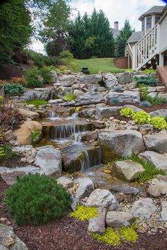 Pondless Waterfall installed on the first episode of the #PondStars on Nat Geo Wild. The homeowner wanted a sanctuary for birds as she enjoys taking photos of her feathered friends.