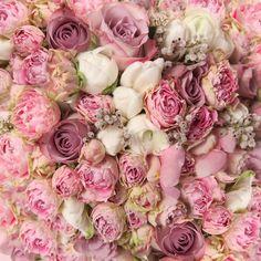 flower bouquet tumblr - Buscar con Google