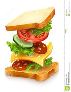exploded view of sandwich ingredients with cheese tomatoes lettuce and sausage. vector illustration isolated on white background Sandwich Drawing, Kombi Food Truck, Ballon Animals, Engagement Mehndi Designs, Kitchen Stickers, Exploded View, Pumpkin Vector, Sandwich Ingredients, Plakat Design