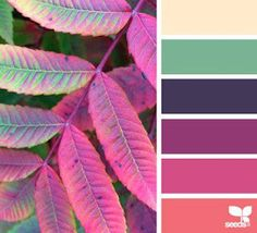 Best Home Color Palette By Room Design Seeds Ideas Colour Pallette, Color Palate, Colour Schemes, Color Combinations, Purple Palette, Design Seeds, Color Harmony, Color Stories, Color Swatches