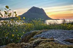 https://flic.kr/p/C5oBrR   Kirkjufell   Mountain Kirkjufell - Grunarfjörður - Snæfellsnes - Iceland