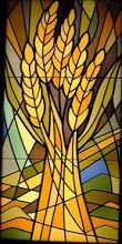 God of every blessing, enrich our minds and hearts through this great feast of… Stained Glass Church, Stained Glass Flowers, Faux Stained Glass, Stained Glass Designs, Stained Glass Panels, Stained Glass Projects, Stained Glass Patterns, Church Banners Designs, Agra