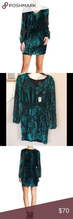 """Green & Black Burnout Long Sleeve Mini Dress **Reasonable Offers Welcome - No trades** - Approx measurements lying flat: -Bust (armpit to armpit): 18"""" - Waist (Smallest part of the waist) : 13"""" Hips: 17 1/4- V-neck - Long sleeves with hook-and-loop cuffs - Back zip closure - Approx. 34"""" length - Fiber Content Self: 82% rayon, 18% nylon Lining: 100% polyester - Dry clean Greylin Dresses Long Sleeve"""