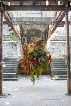 Flower Cart, Plant Nursery, Back Gardens, Gardening For Beginners, Growing Plants, Ikebana, Floral Arrangements, Flower Arrangement, Banksy