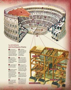 cross-section of the Flavian amphitheater