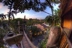 Tarzan's Treehouse (it's way better than the Swiss Family Robinson treehouse)