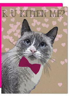 Valentines Day Card - R u kitten me?