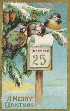 free Christmas cross stitch pattern vintage greeting card birds
