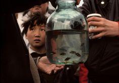 Gueorgui Pinkhassov - Mongolia. 1990.