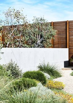 If you live in a dry and arid climate then your desert landscaping is going to take a little more planning than some other parts of the country. desert landscaping will have to work with a plan that includes only plants and trees that Landscape Design Plans, Landscape Architecture, Landscape Materials, Australian Native Garden, Australian Garden Design, Coastal Gardens, Modern Gardens, The Design Files, Contemporary Landscape