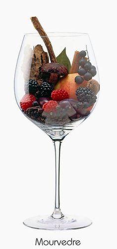Mourvèdre (also known as Mataró or Monastrell) (red) | Aromas of blackberry, black currant, plum, peach, raspberry, mushroom, bark, licorice, clove, black pepper, cinnamon, bay laurel, nutmeg | Mediterranean coast of Spain