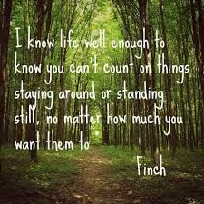 Image result for all the bright places quotes