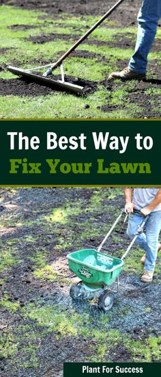 lawn and garden This lawn repair step by step is the absolute best way to save your lawn. If your lawn is struggling, youd be surprised at how this lawn renovation technique can give you your best lawn yet. Grow Grass Fast, Growing Grass, Growing Herbs, Lawn Soil, Weeds In Lawn, Garden Care, Organic Lawn Care, Lawn Repair, Lawn Care Tips