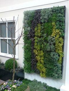 25 pod – XL herb garden