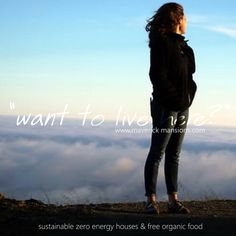 Zero energy passive houses in the middle of nature. Find out about the architecture itself. Sustainable houses and house plans.