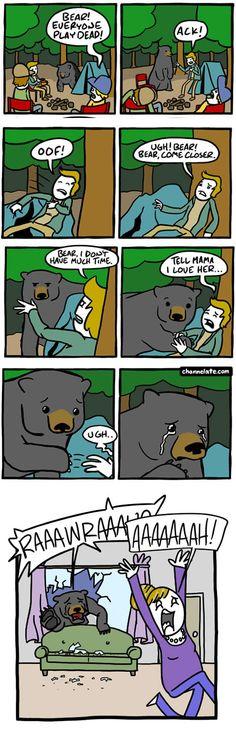 Bear in camp - 9GAG