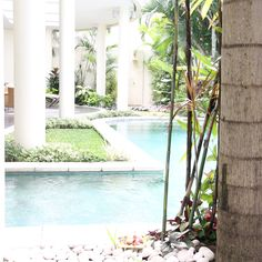 Bali Bali, Aquarium, Outdoor Decor, Travel, Home Decor, Goldfish Bowl, Viajes, Decoration Home, Room Decor