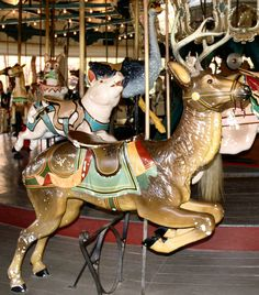 pullen park carousel   National Carousel Association - The Pullen Park Carousel - Dentzel ...