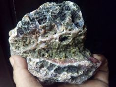 Botryoidal Agatized Coral (Orb inclusions)