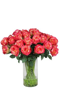 SilkSense Corporate Silk Flower Rentals is a growing brand that offers sales-oriented entrepreneurs an opportunity to buy a complete business package, backed by over 20 years of industry experience, in the beautiful field of corporate silk flower rentals. Red Rose Arrangements, Corporate Flowers, Silk Flowers, Red Roses, Glass Vase, Wedding Ideas, Beautiful, Home Decor, Decoration Home