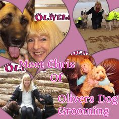 Meet Chris from Olivers Dog Grooming @OliversDGS