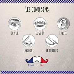 Learning French or any other foreign language require methodology, perseverance and love. In this article, you are going to discover a unique learn French method. Travel To Paris Flight and learn. Basic French Words, French Phrases, How To Speak French, French Quotes, Learn French, French Expressions, French Language Lessons, French Lessons, Spanish Lessons