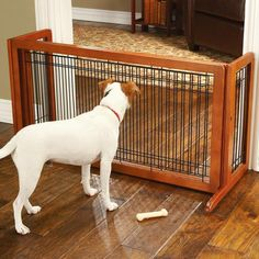 Dog gates that need no special installation—and won't damage walls or floors.