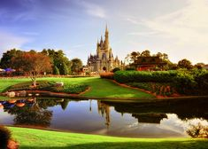 Morning Light on the Magic Kingdom   by Express Monorail