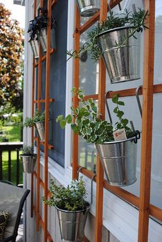 "Potted herbs hanging on a trellis for an outdoor ""living wall""."