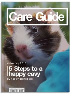 Have you grabbed your FREE copy of the Guinea Pig Care Guide yet?   If not do it here now: http://on.fb.me/VGI9Kj   The Guide will teach you how to:   -feed your guinea pig the right food   -hold your piggie properly   -select the right cage   -understand your guinea pig's health   -reduce shedding   and MORE!   Grab your copy here: http://on.fb.me/VGI9Kj