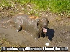 hahahaha….I can totally relate! My boy does this! Does your little girl like to roll in mud or dirt?