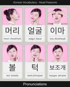 pronunciations for: head/hair, face, forehead, cheek, chin/jaw, and dimple in korean Korean Slang, Korean Phrases, Korean Words Learning, Korean Language Learning, Learn Korean Online, Learn Korean Alphabet, Korean Letters, Learn Hangul, Korean Writing