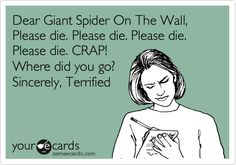 Dear Giant Spider on the Wall,  Please die. Please die.  Please die.  Please die.  CRAP!  Where did you go?    Sincerely,   Terrified