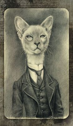 Scholar Whiskers - Sarah B