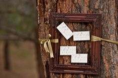 like frame tied to tree(s) --- with directions/location arrows, menu, photographs