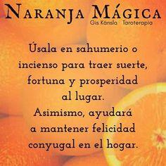 La #naranja es un #elemento muy util en la #magia #natural; su #fuerza energética  va desde invocar #prosperidad y #suerte al #hogar o… Tarot, White Magic, Reiki, Feng Shui, Witchcraft, Namaste, Spirituality, Mindfulness, Herbs